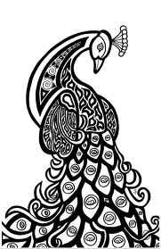Peacock ATC