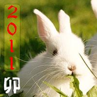 New Year Parcel Swap - January 2011