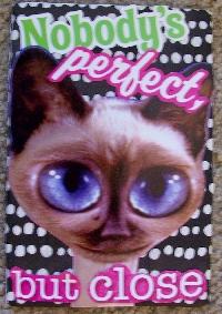 Cat calendar Homemade postcard