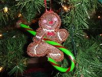 Hang it on the Christmas tree #2