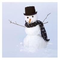 Snowman Ornament Swap